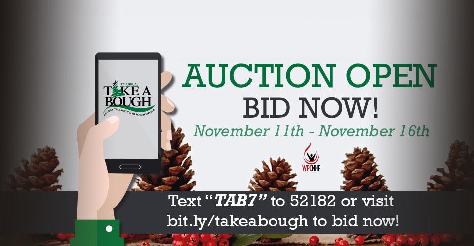 TAB Slider Auction 4
